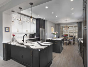 Maria Jean's Featured Project: <br> Carriage Black Kitchen Remodel
